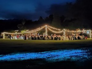 WEDDINGS&FAIRY LIGHTS
